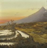 Sawah landscape at sunset
