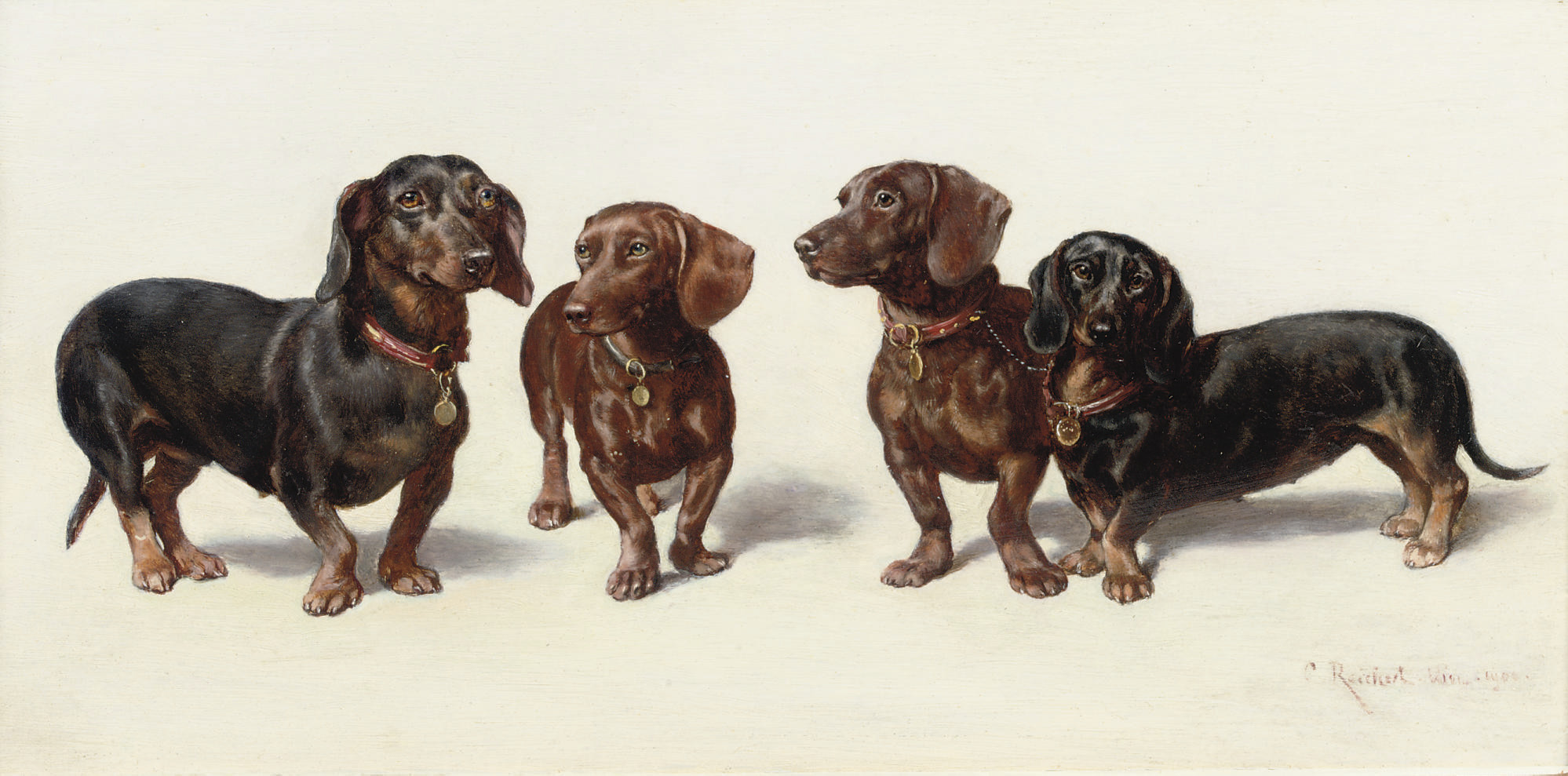 Four Dachshunds