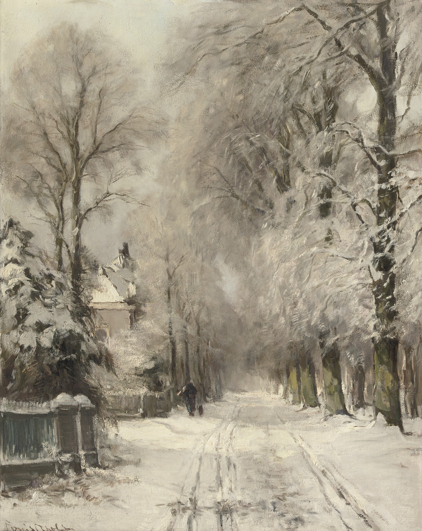 Wandering along a snowy lane