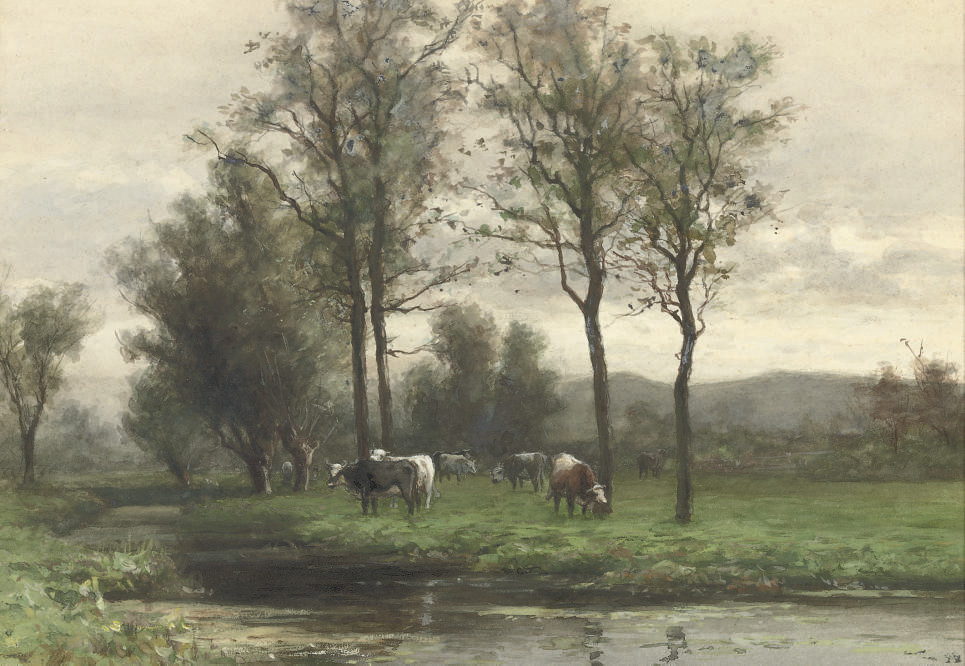 Cattle grazing near a river