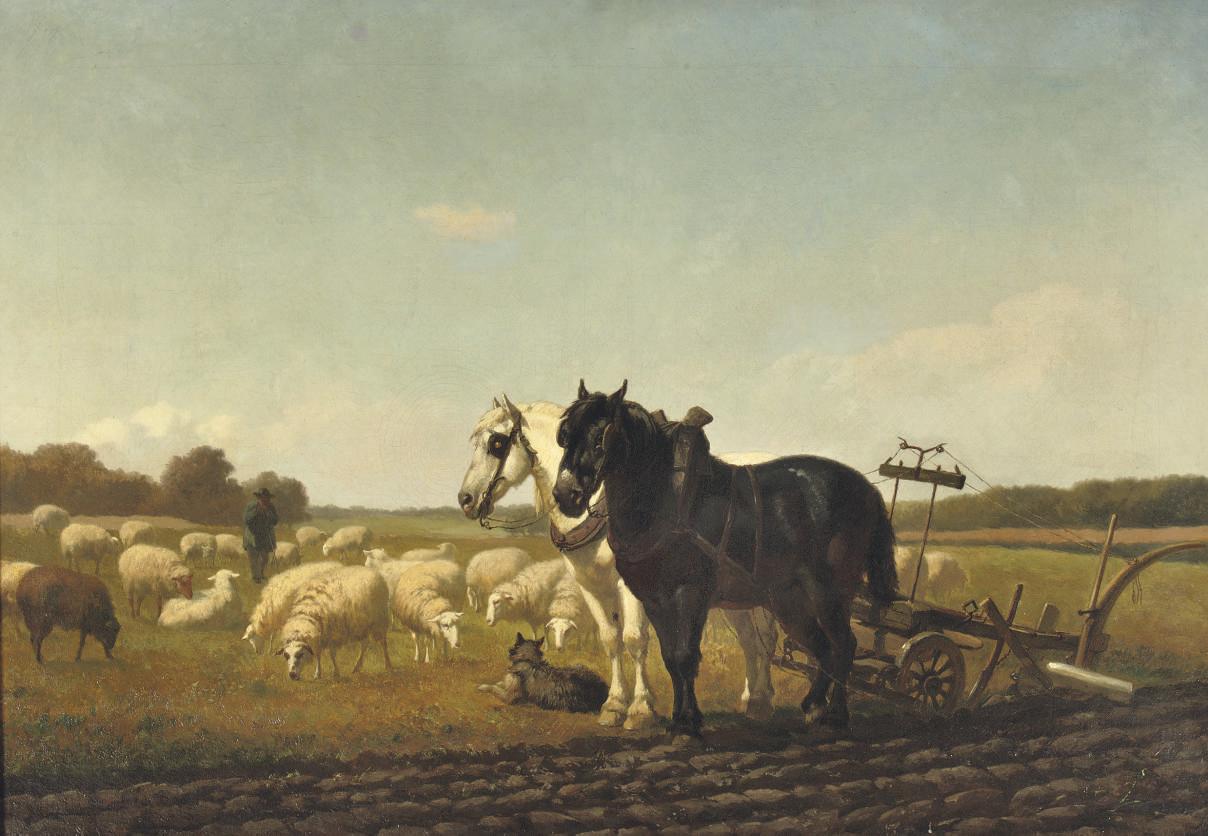 The plough-team