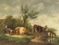 Cattle under a willow-tree