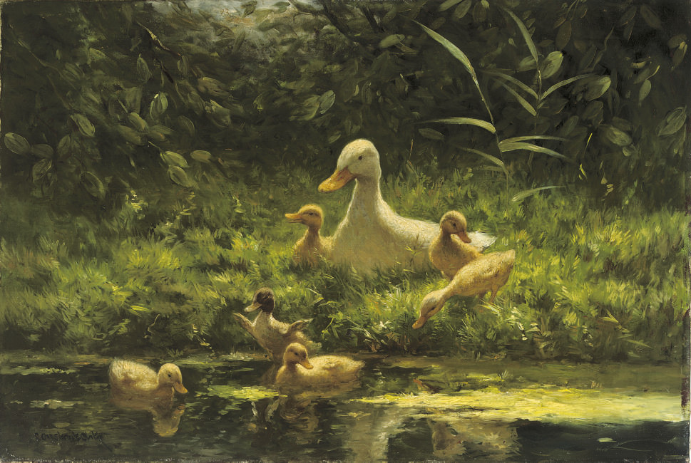 The first swim