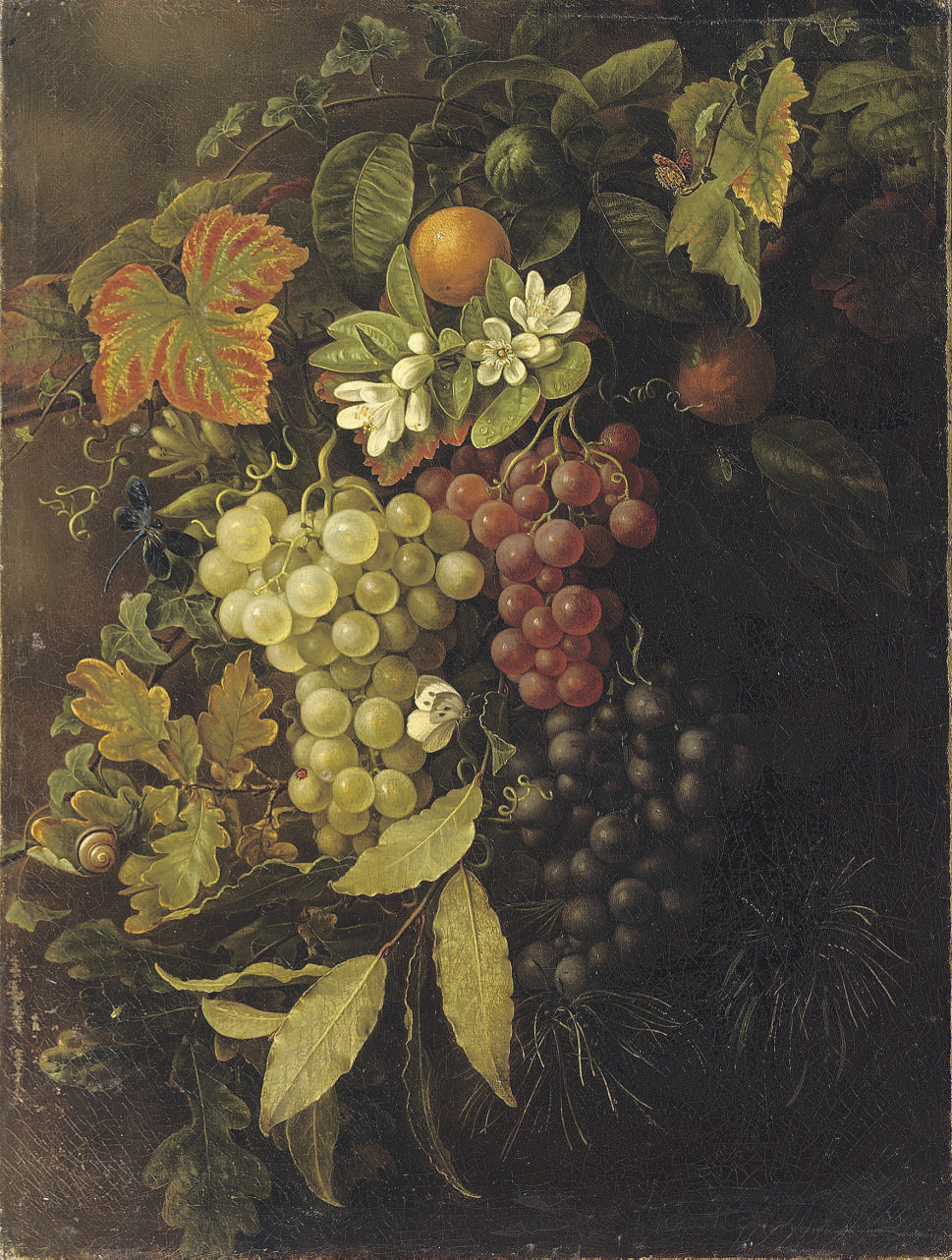 Autumn: grapes, oak leaves, oranges and a dragonfly