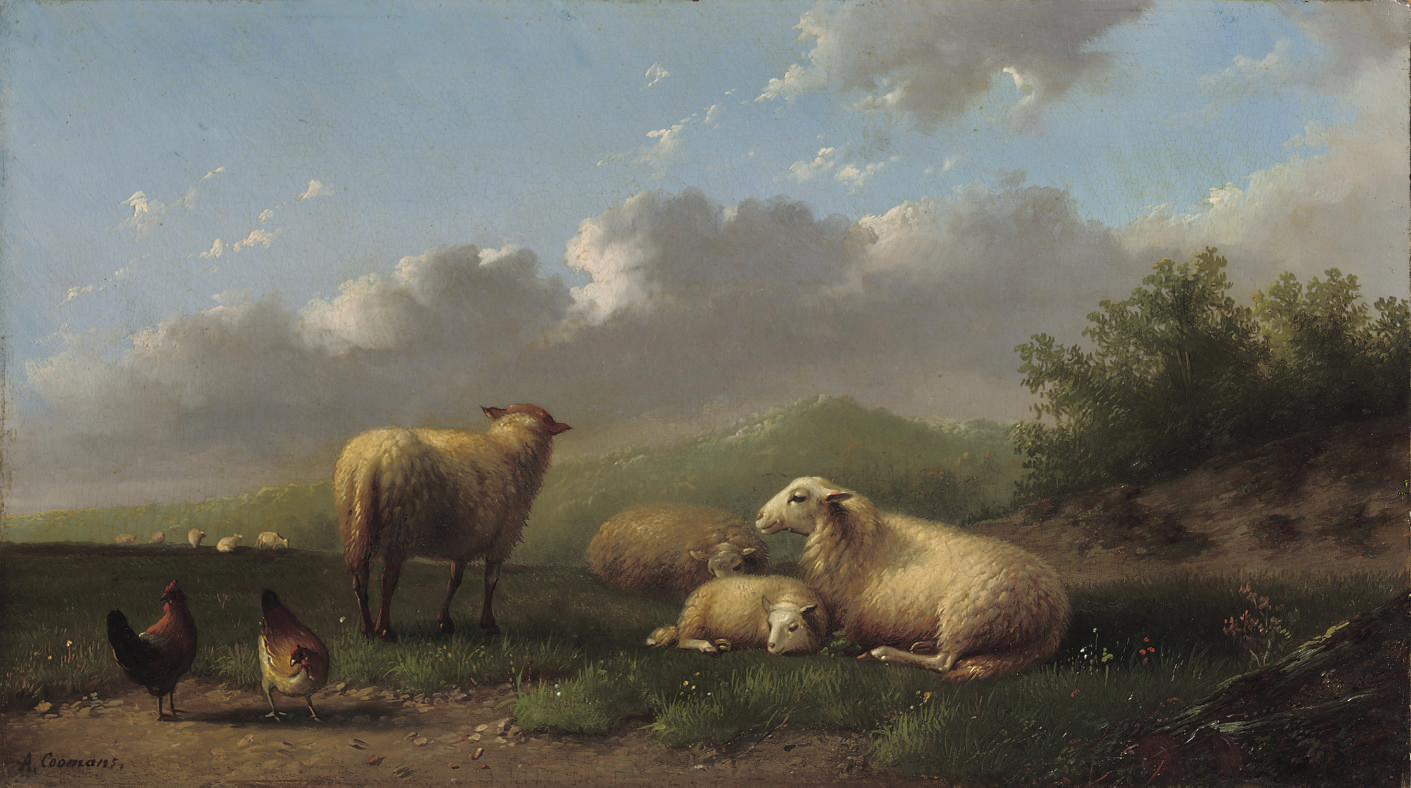 Sheep and chickens in a meadow