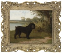 A black water dog with a stick by a lake