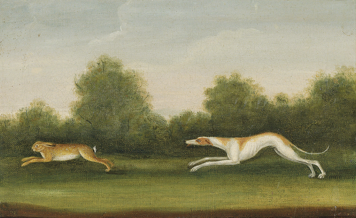 A greyhound chasing a hare