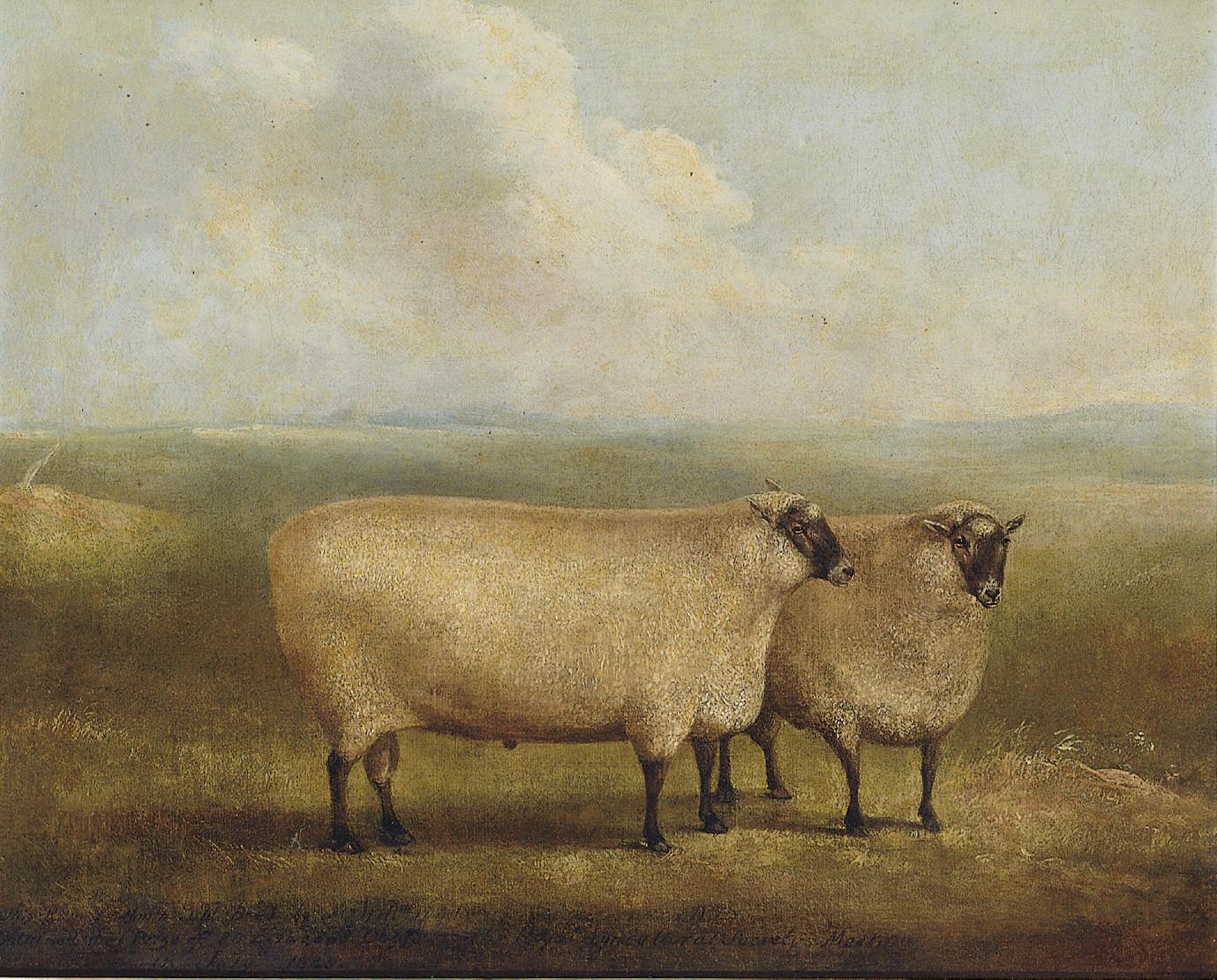 James Loder of Bath (Bath 1784