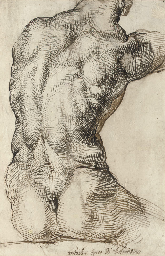A nude torso seen from behind, after the Apollo Belvedere