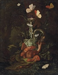 A forest floor landscape with a thistle, funghi, moths, a lizard and snakes