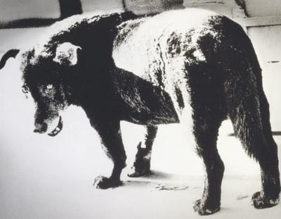MORIYAMA DAIDO (b.1938)