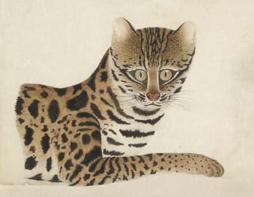 Calcutta artist, circa 1810