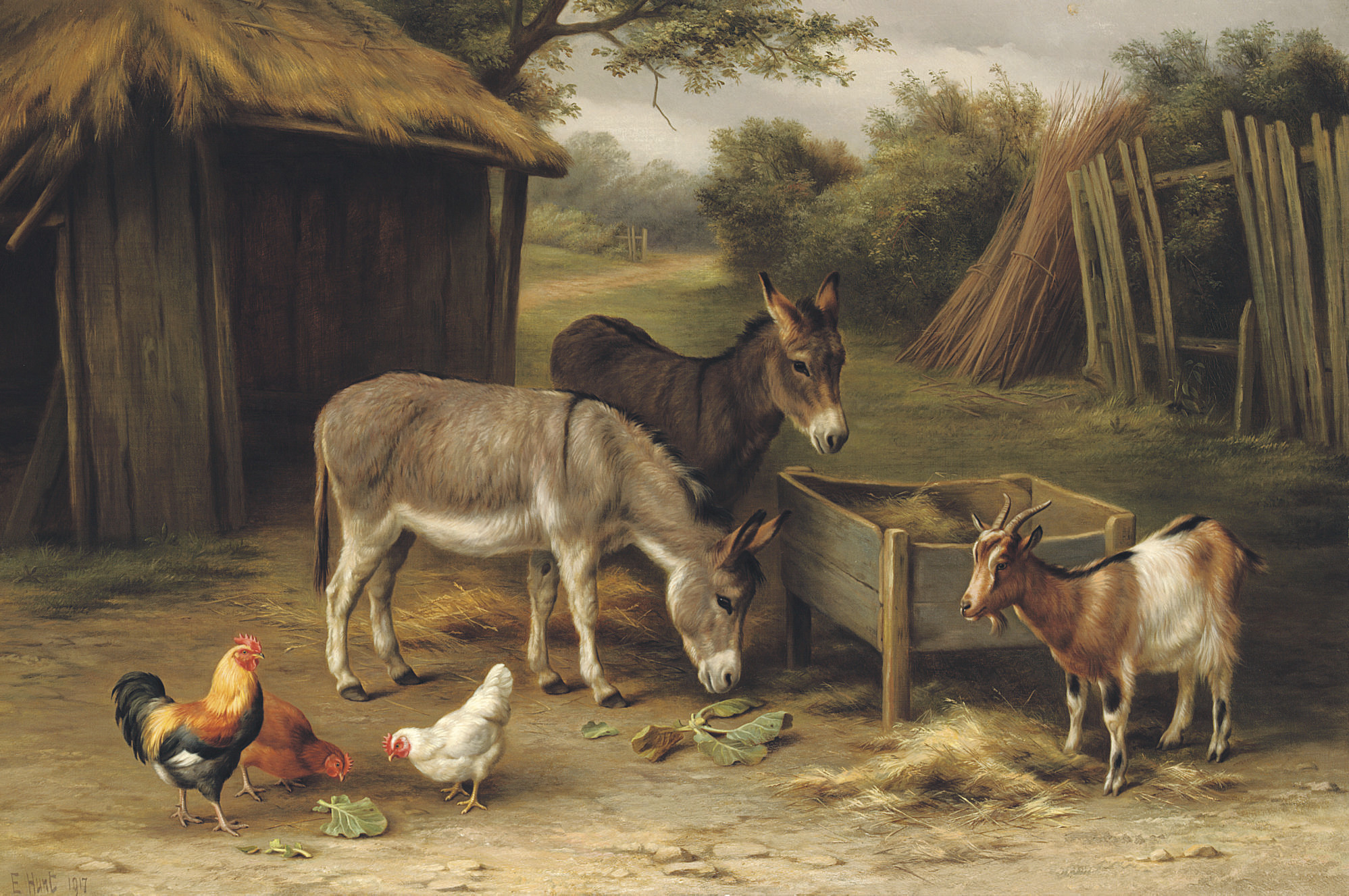 A farmyard with donkeys, a goat and chickens