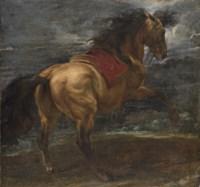A rearing stallion