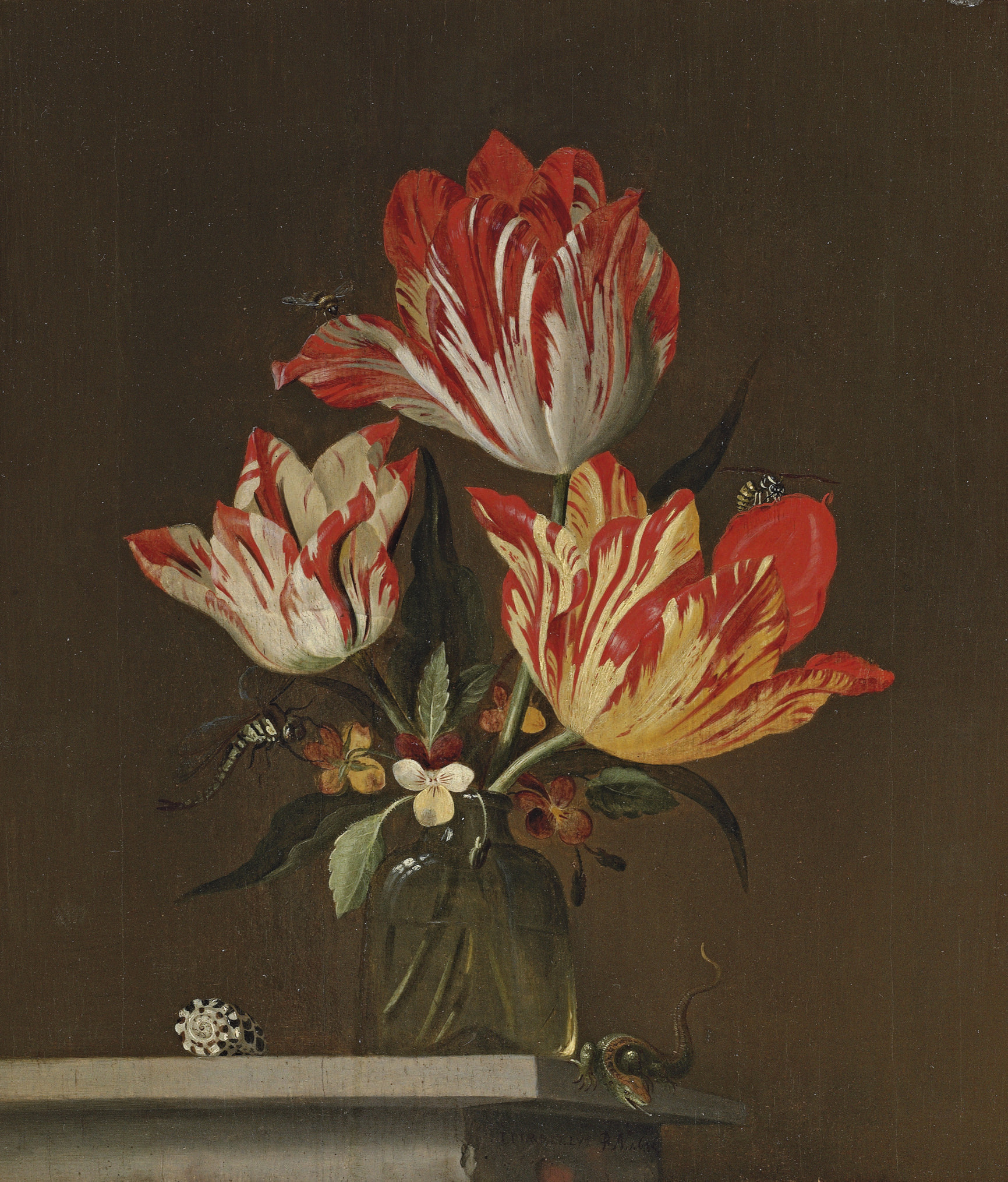 Tulips and violets in a vase, with a shell, a lizard, a dragonfly, a bee and a wasp, on a ledge
