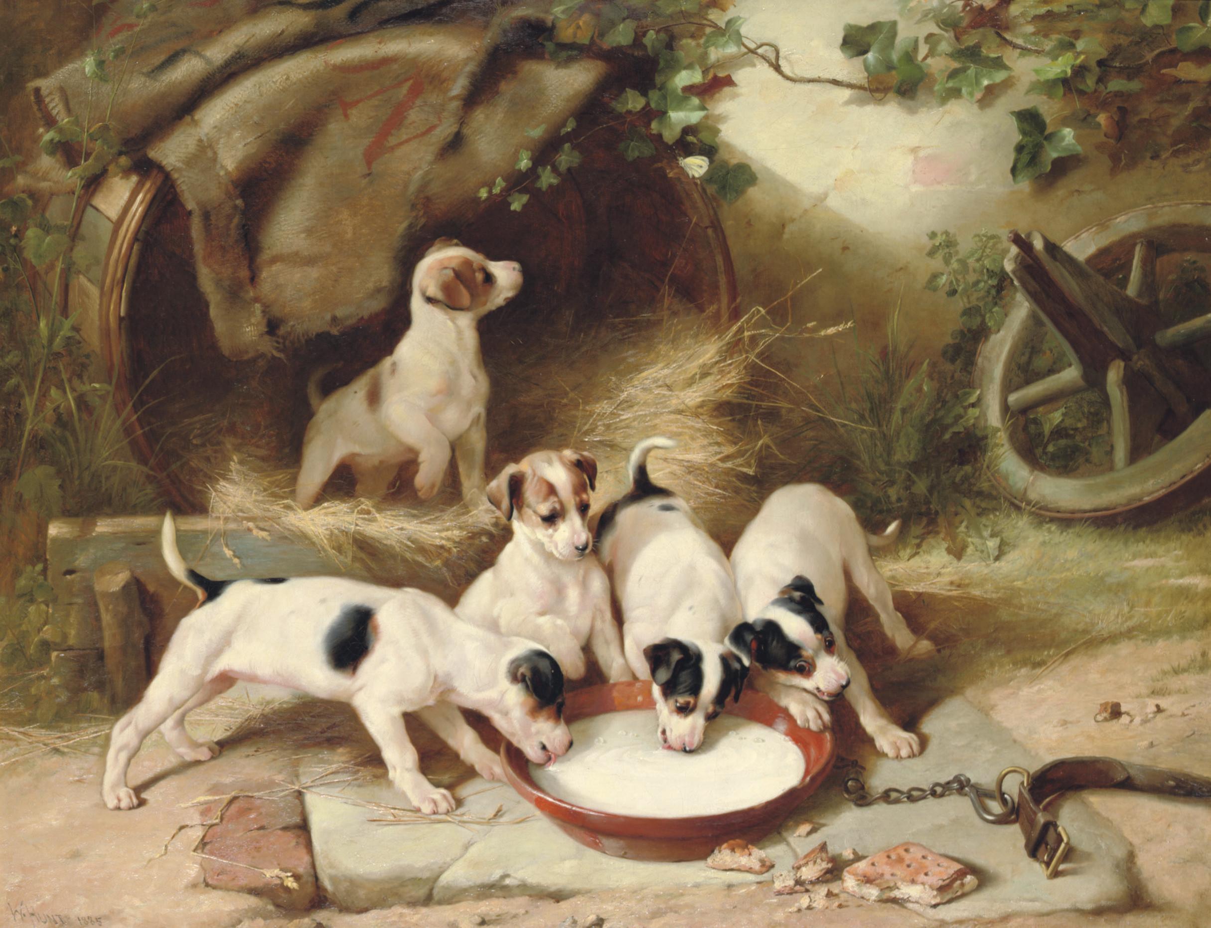 Puppies' breakfast