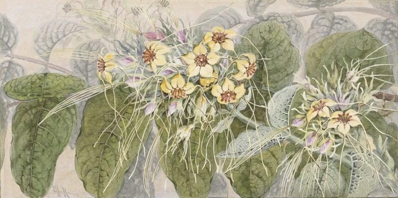 Marian Ellis Rowan (1848-1922)