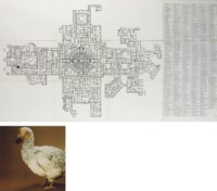 (i) Map of the World Part I: The University (ii) Dodo