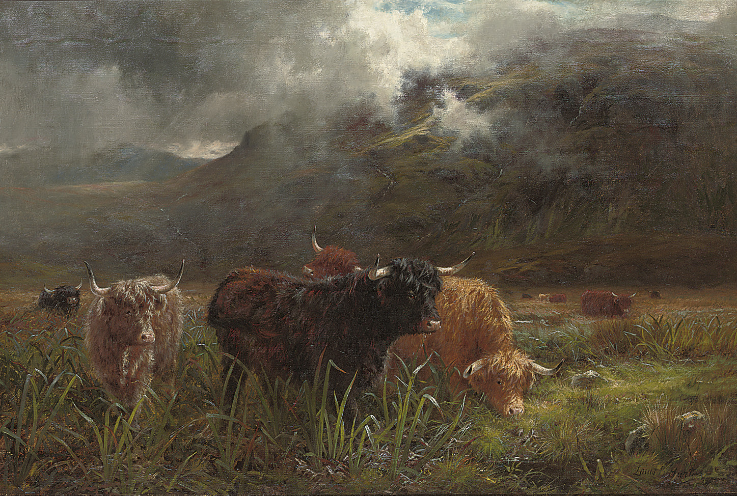 A rough pasture; Showery weather