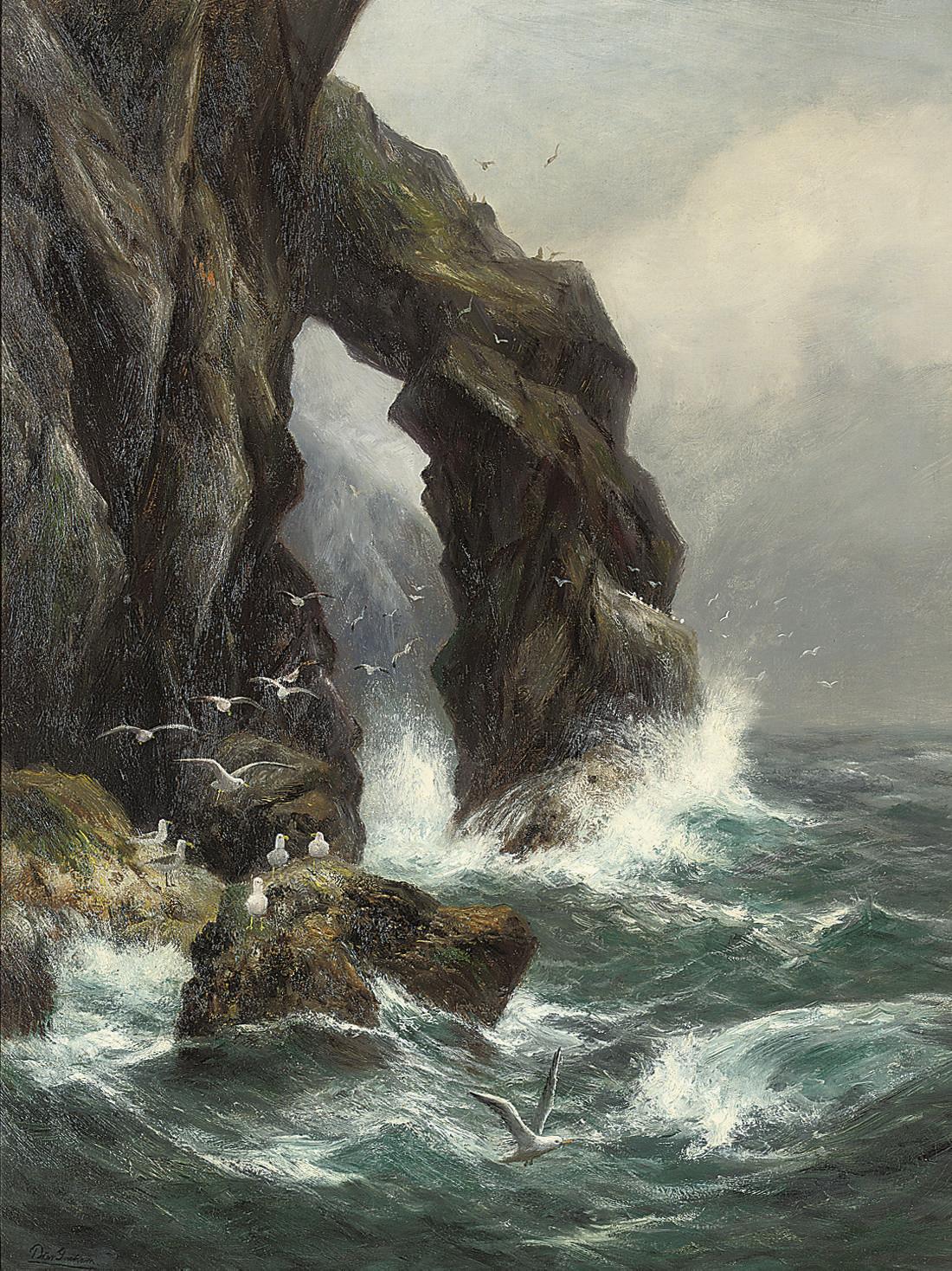 Gulls off a rocky coastline