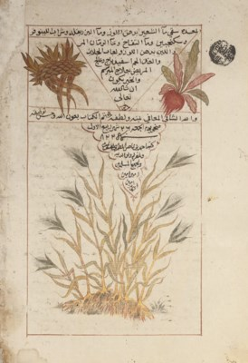 A MEDICAL AND HERBAL TREATISE,