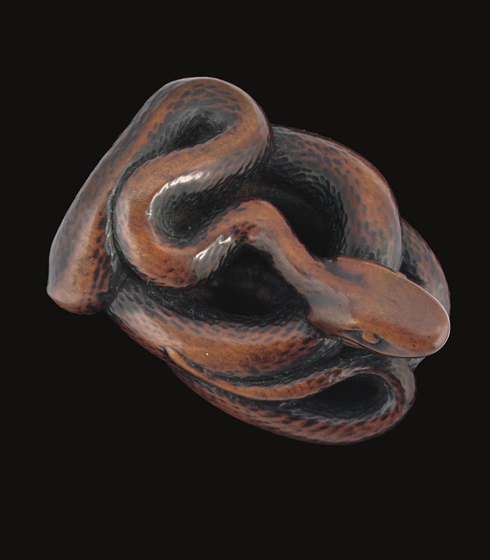 A wood netsuke of a snake, 18t