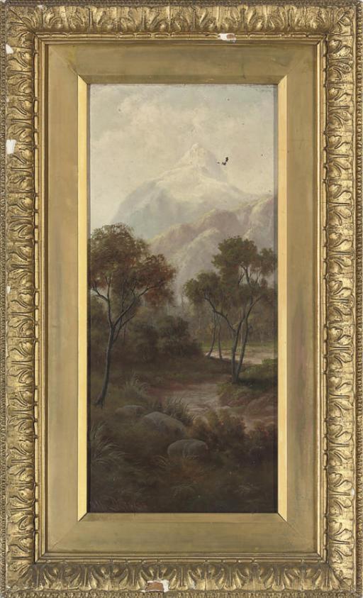 The back of Mount Egmont, New Zealand