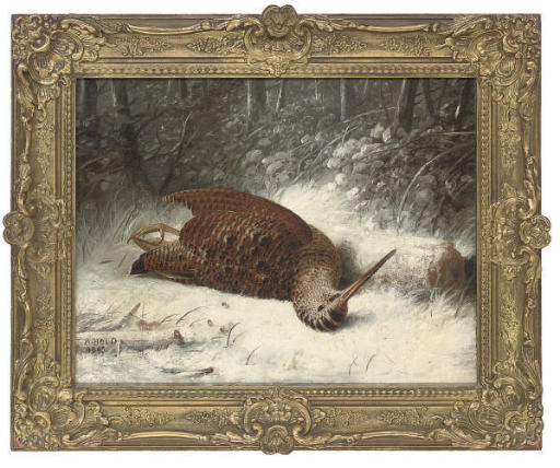 A woodcock in the snow