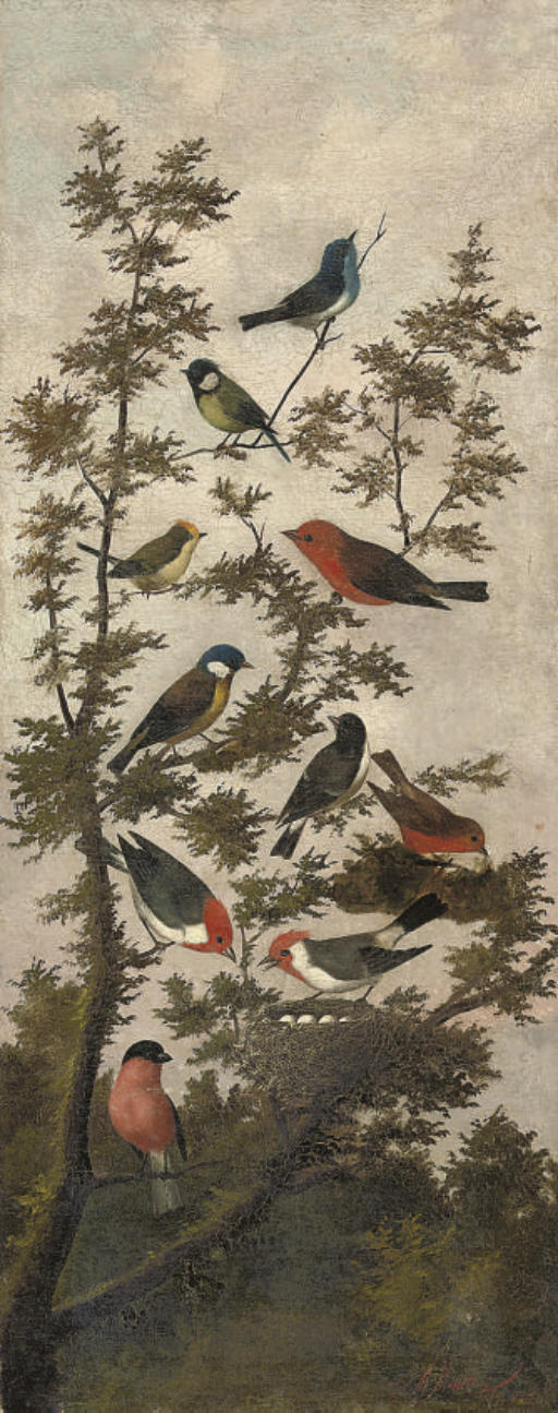 Songbirds in a tree (illustrated); and Pigeons on a wall, with birds in a tree