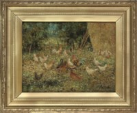 Hens in the farmyard