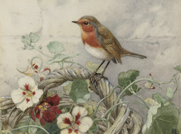 Winifred Marie Louise Austen,