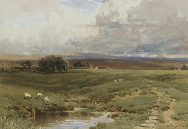 Sheep grazing below the moors
