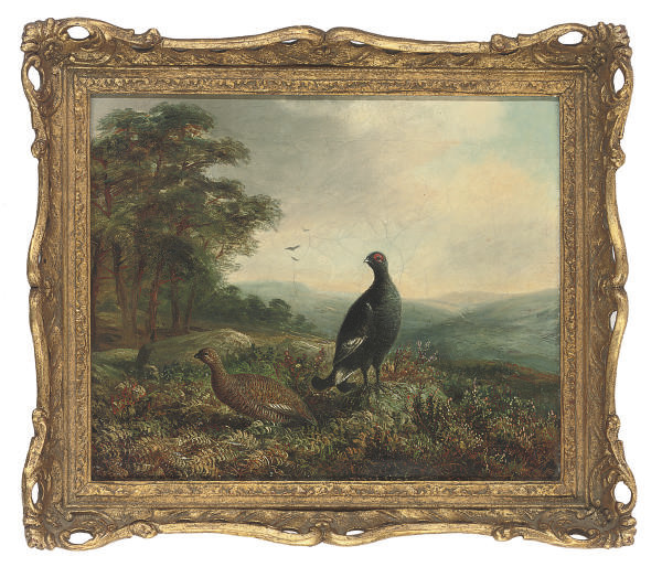 A black grouse and hen in an extensive landscape