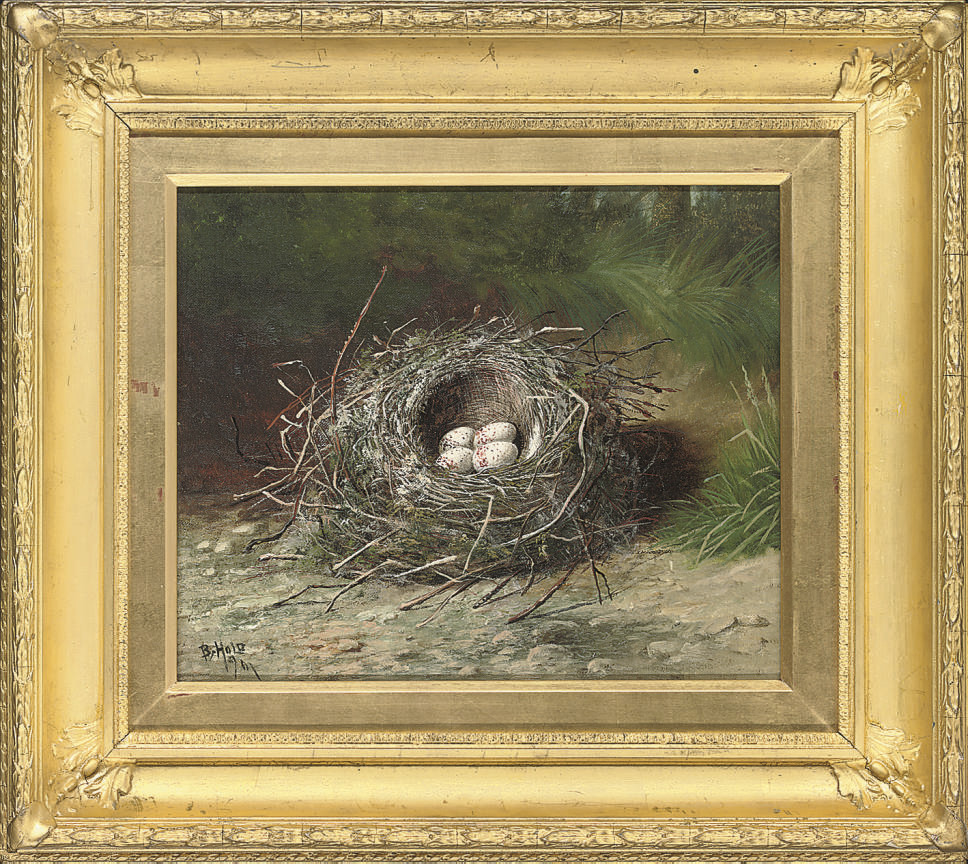 Birds eggs in a nest on a grassy bank; and Birds eggs in a nest on a sandy bank
