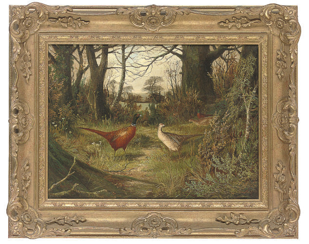 Pheasants on a wooded path with a gate beyond