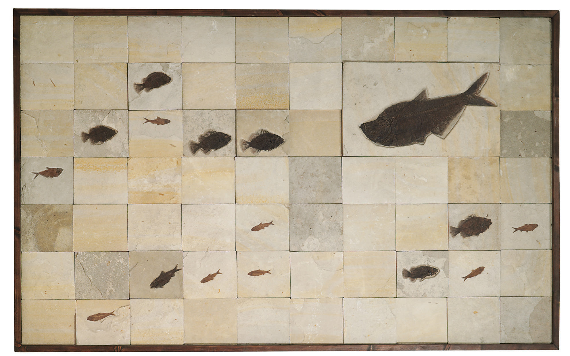 A LARGE MOSAIC FOSSIL FISH PLAQUE