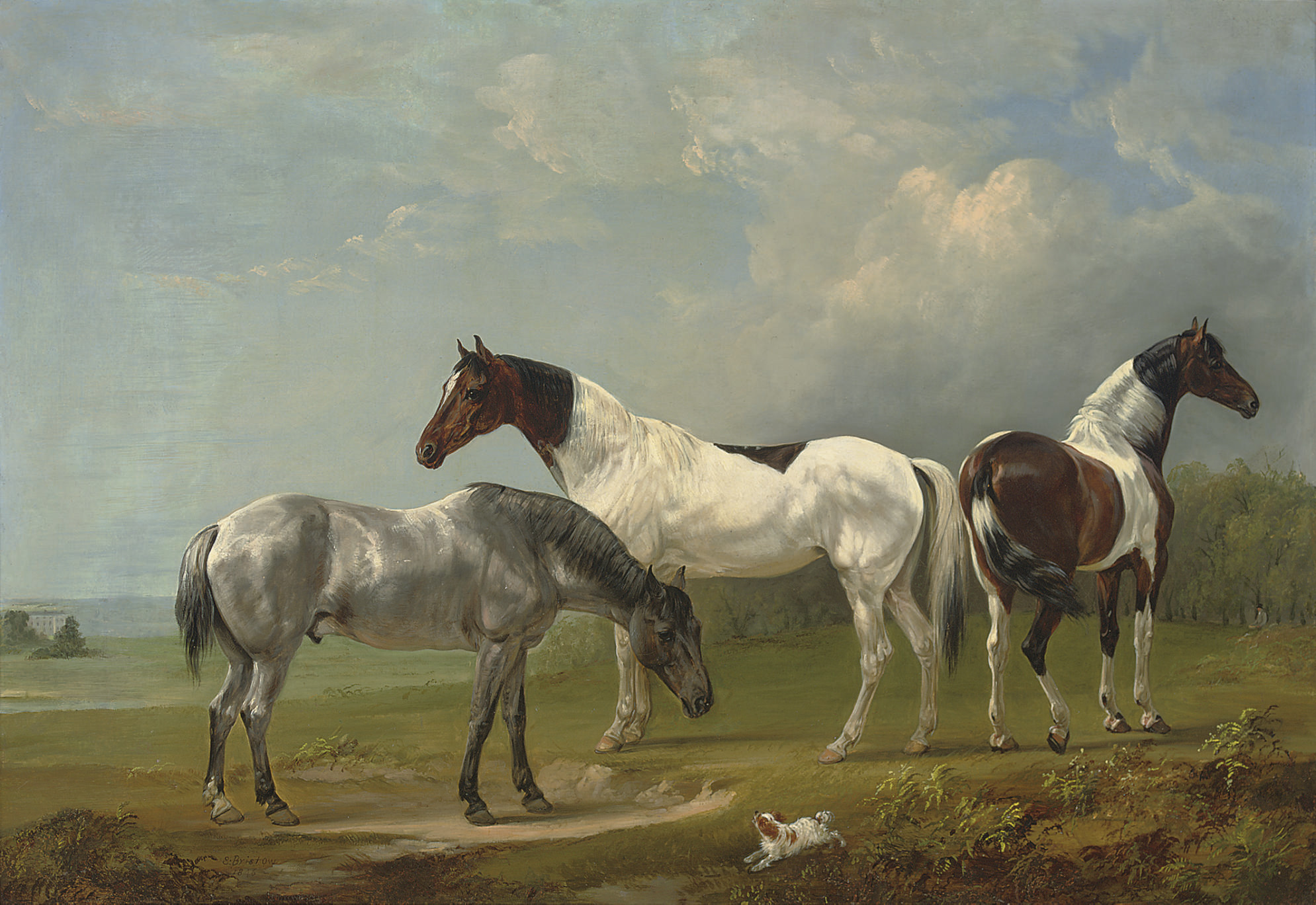 Two Skewbalds, a grey and spaniel in an extensive landscape, a country house beyond