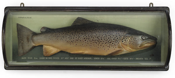 A FRAMED AND GLAZED PAINTED PL