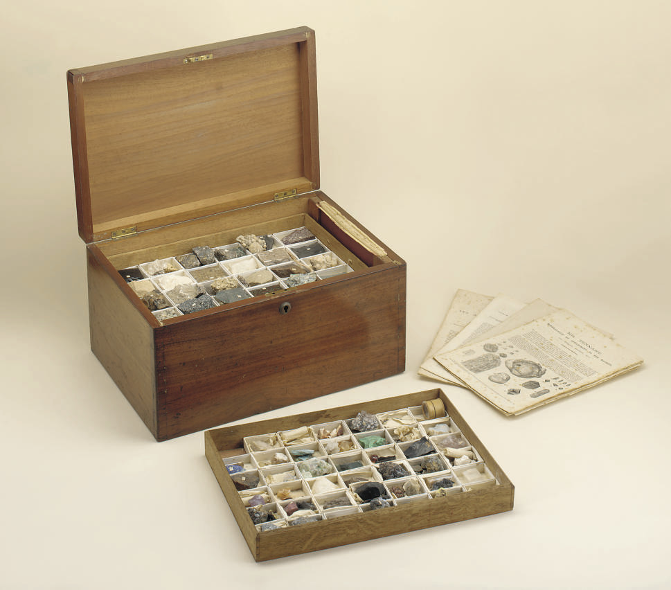 Cabinet of minerals, rocks and