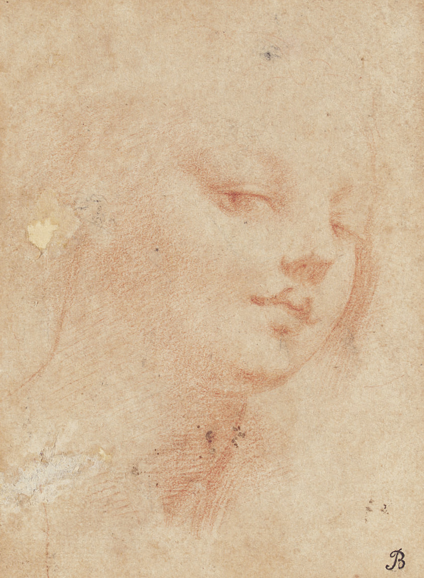 The head of a young woman