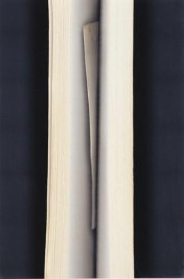 VERONICA BAILEY (b.1965)