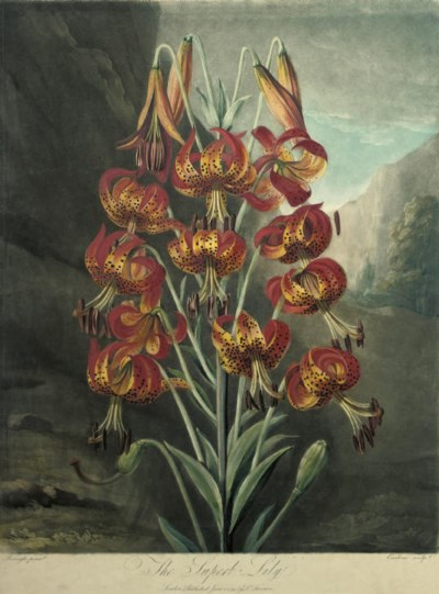 Richard Earlom (1743-1822), af