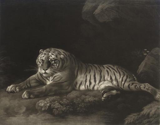 John Murphy (late 18th century), after George Stubbs