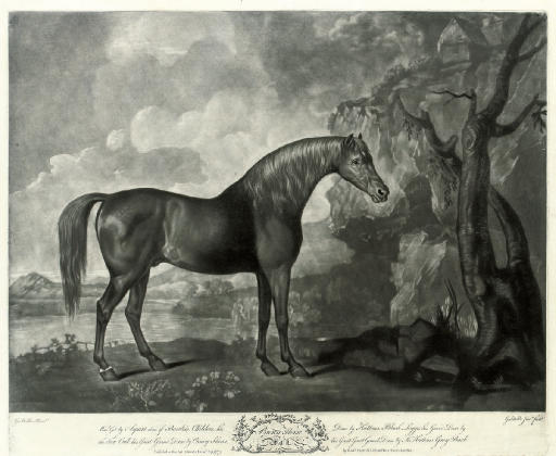 George Townly Stubbs (1756-1815), after George Stubbs