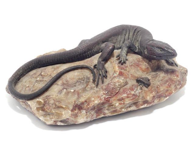A bronze model of a lizard