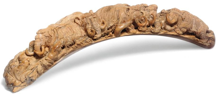 A mammoth tusk