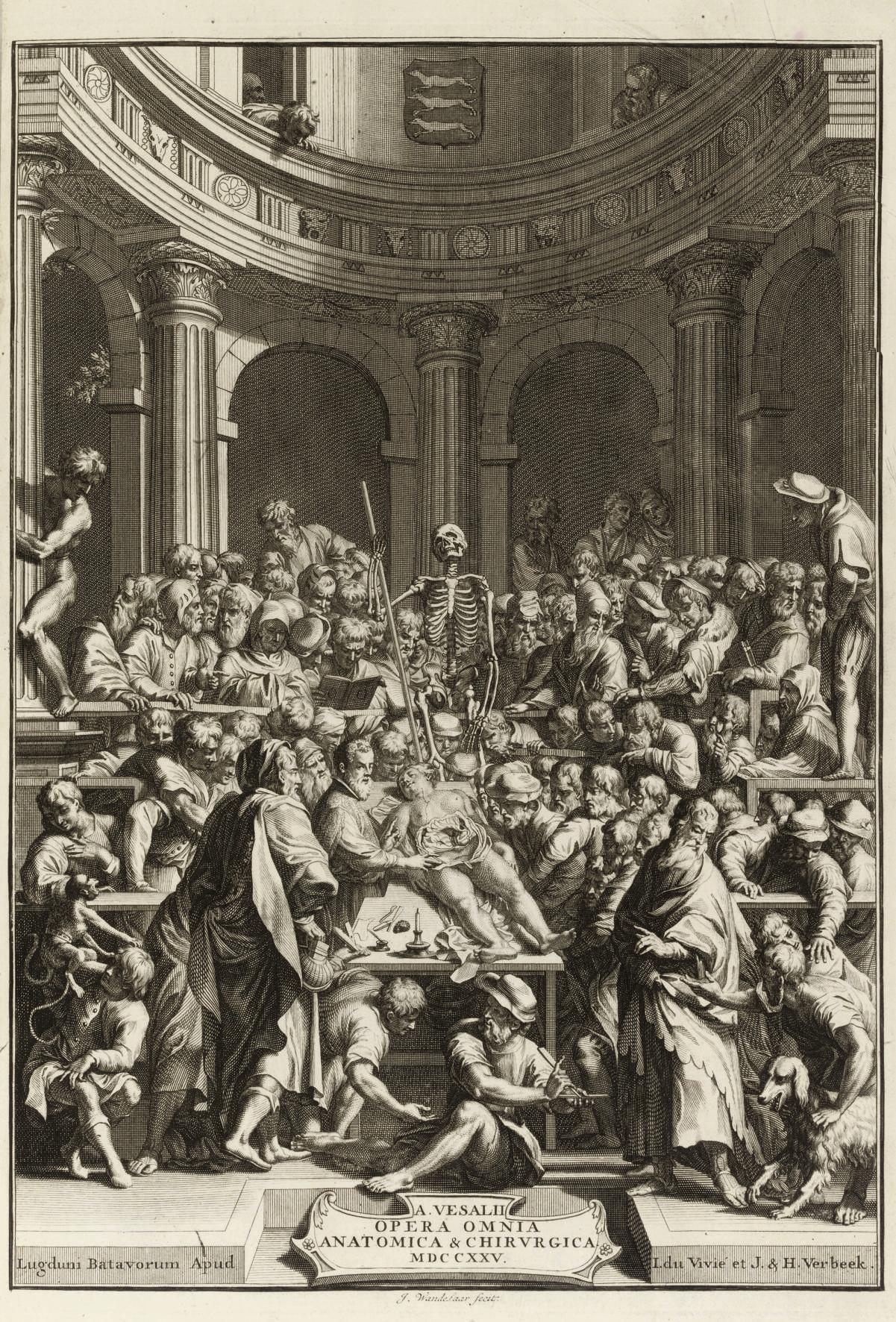 VESALIUS, Andreas (1514-64). O