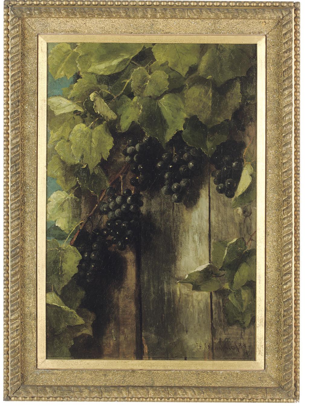 A fruiting vine