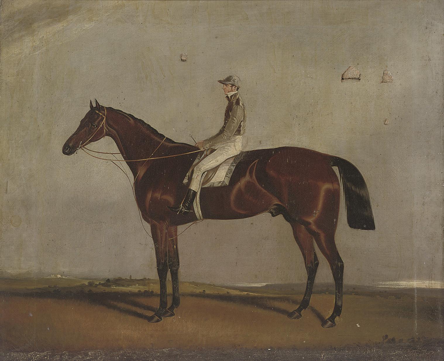 A chestnut with jockey up, a race course beyond