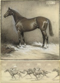 The favourite 'Right Royal' in the stable; and Racing hard